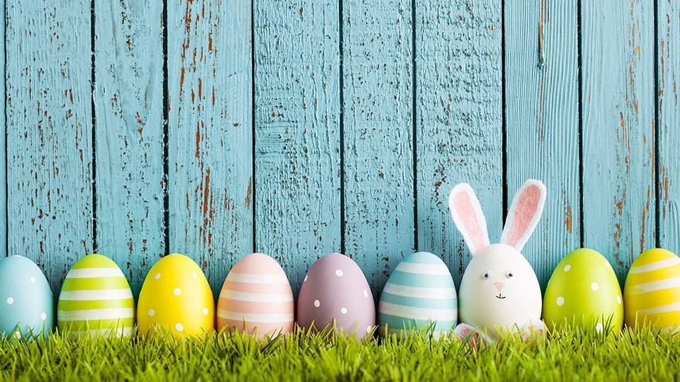 Easter Egg Hunt and BBQ (By EMMA Catering)