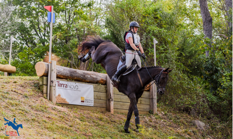 2019 USEA Area Championships Round-Up