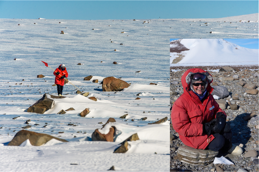 Free Live NSN Webinar Series - NASA's Search for Meteorites in Antarctica: Who, What, When, Where, Why and How?