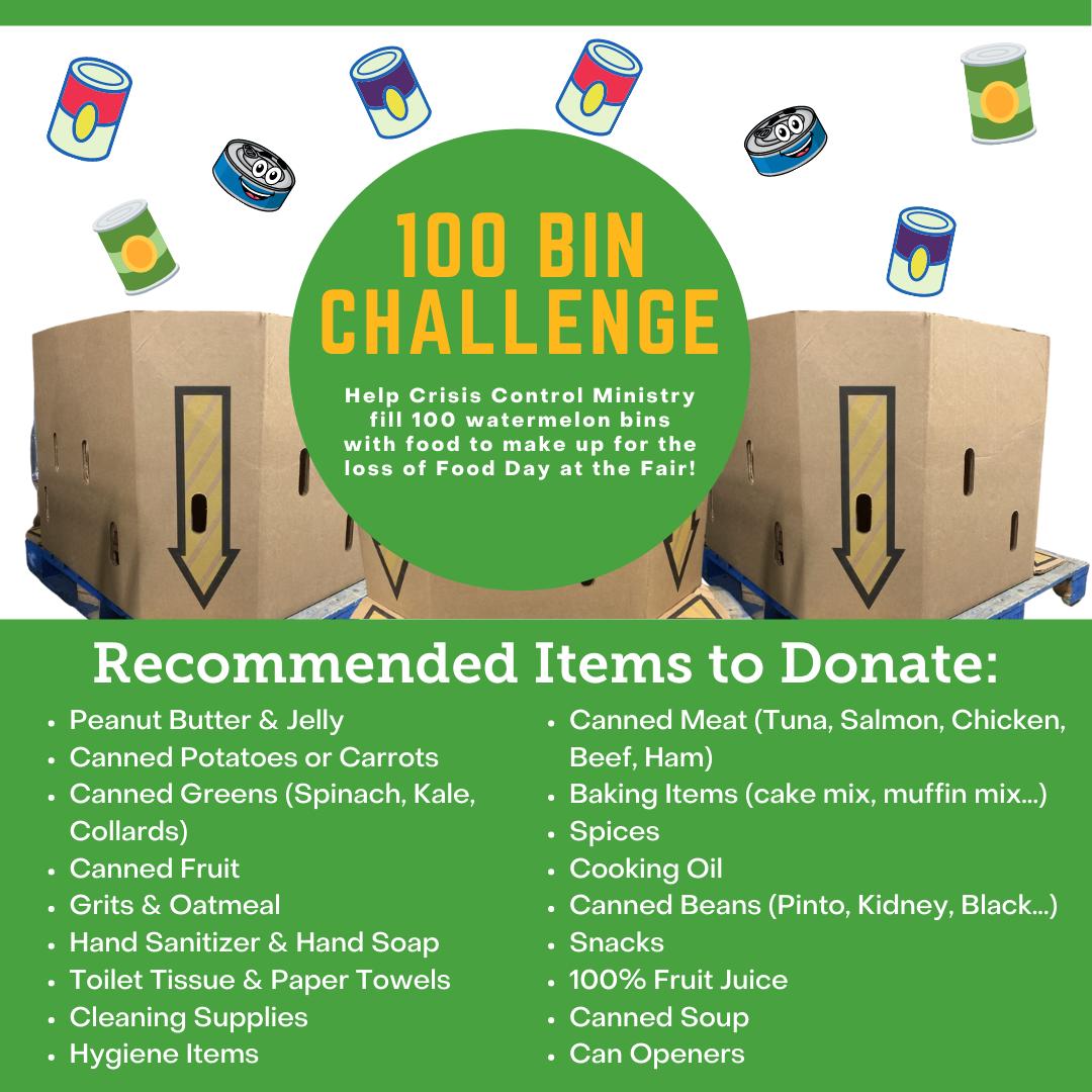 100 Bin Challenge Flyer
