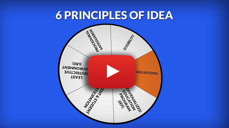 Link to youtube video 6 Principles of IDEA: Evaluations