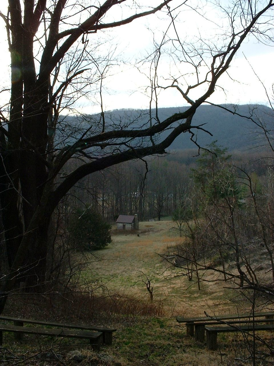 View of Ruby's Cabin from the Amphitheater