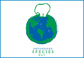 Saving Endangered Species Youth Art Contest Announced