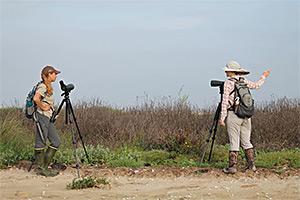 Stephanie Bilodeau and Kristen Vale monitor beach-nesting birds