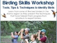 Birding Skills Workshop