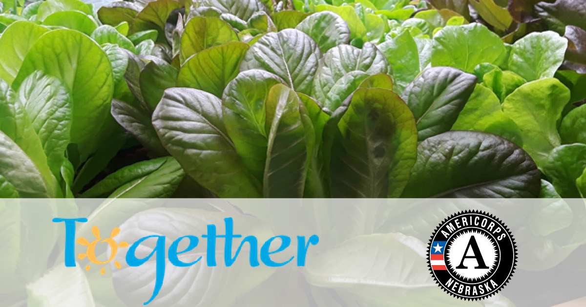 Together Omaha AmeriCorps Program