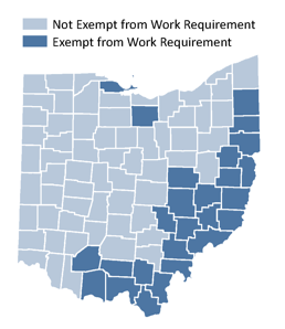 Who Receives Food Assistance Ohio Implications