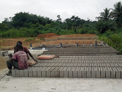 Work on Mikey's Fish Farm at the Nkabom Centre (6-8 weeks, Location: Okurase, Ghana)