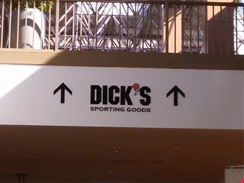 Dick's Sporting Goods Dimensional Letters