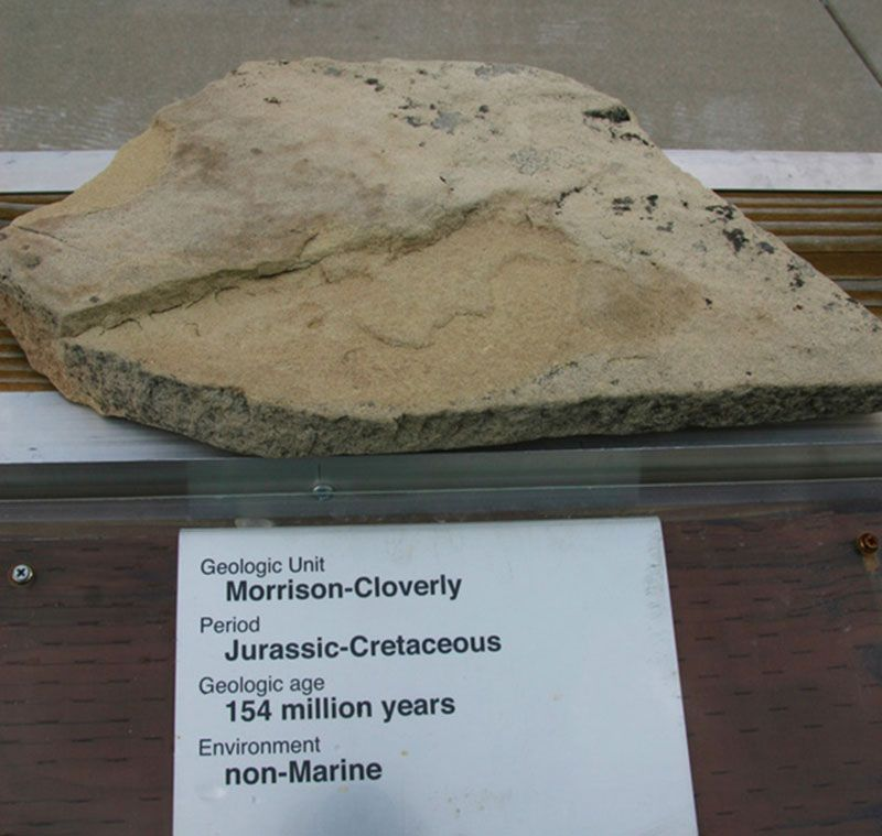 Morrison-Cloverly - Jurassic-Cretaceous