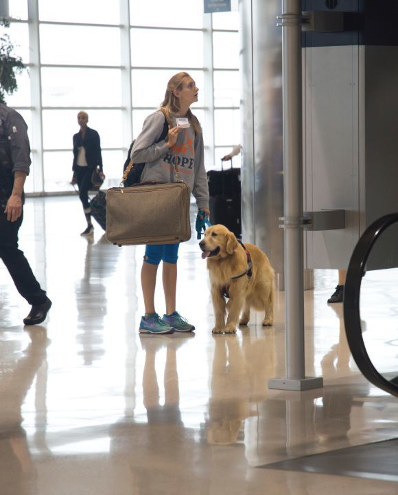Basic Guidelines and Expectations for Air Travel with a Service Dog