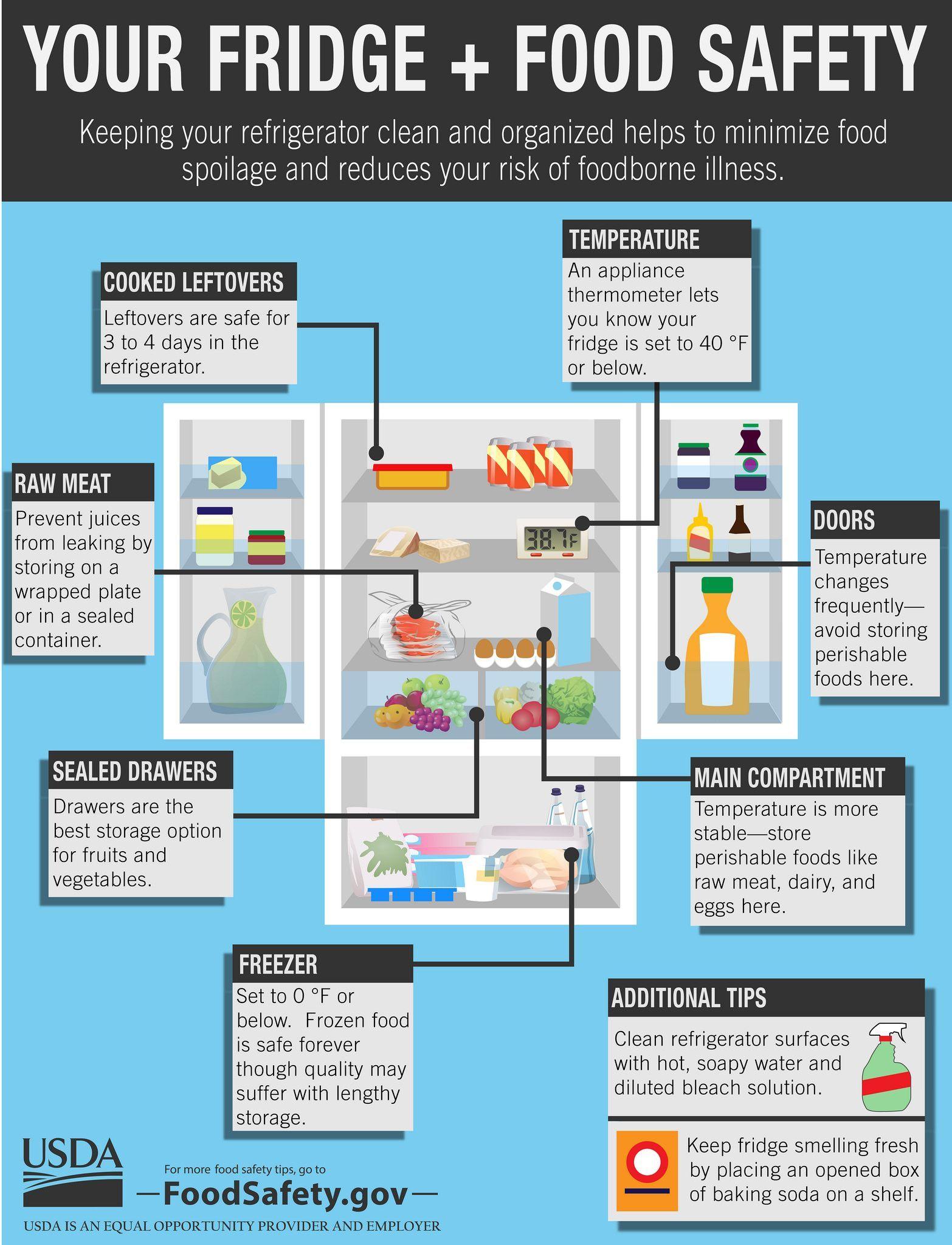 Your Fridge & Food Safety
