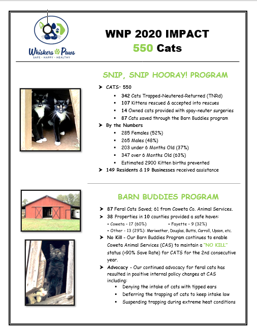 550 Cats Helped in 2020