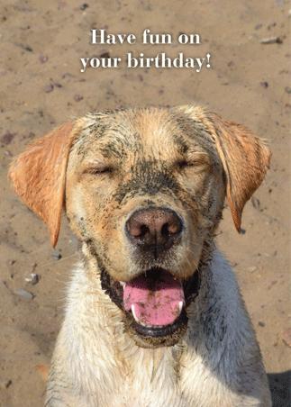 Birthday: A-1