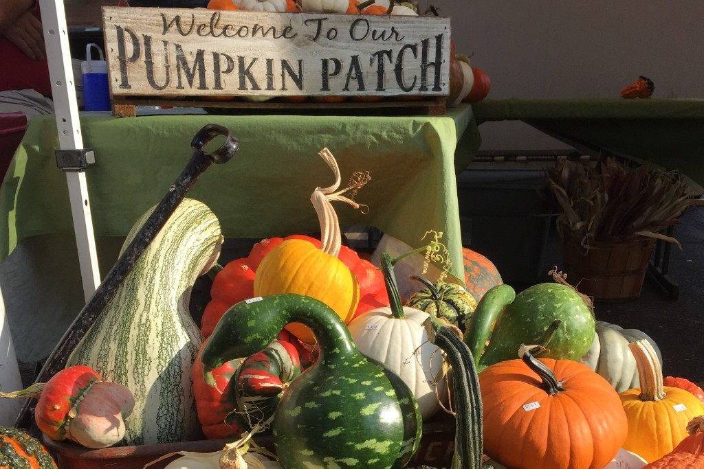 The Country Pumpkin*