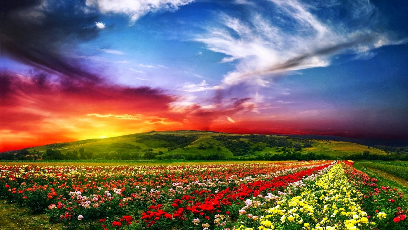 Discovering MErcy-Contact Us-Beautiful Landscape with Colorful Sky