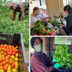 Food Sovereignty Fund