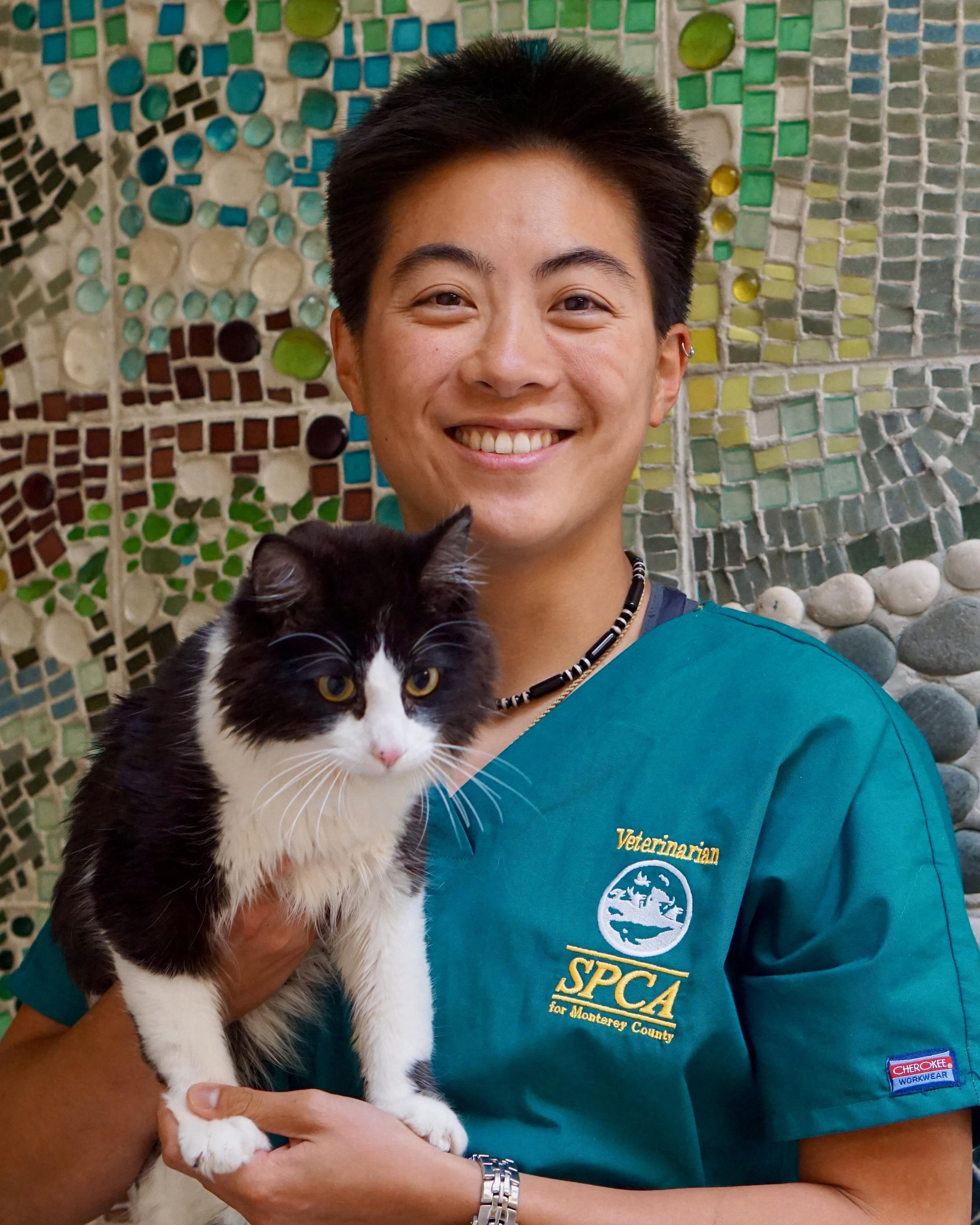 Your Veterinary Team