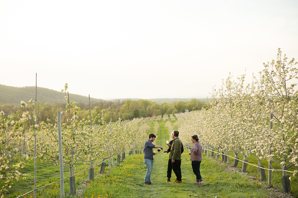 2018: The Year of Cider