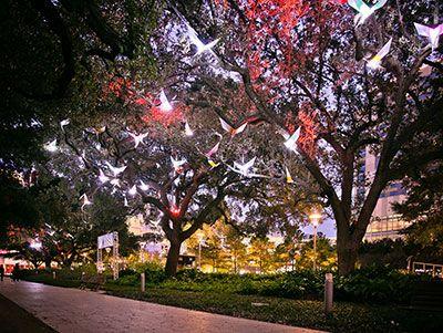 Houston Audubon and Discovery Green Film Screening