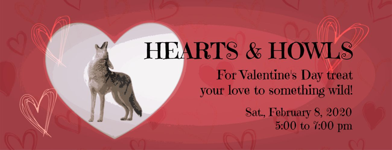 5 pm Hearts and Howls Valentine Event - SOLD OUT!