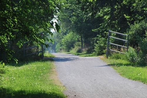 David Murbosck Trail