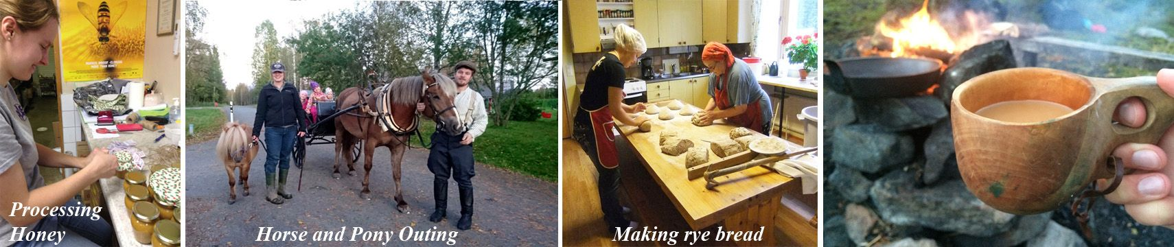 Processing honey, horses, baking and more in Finland