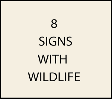 8. - I18550 - House  Address Signs with Carved Hand-Painted Wildlife