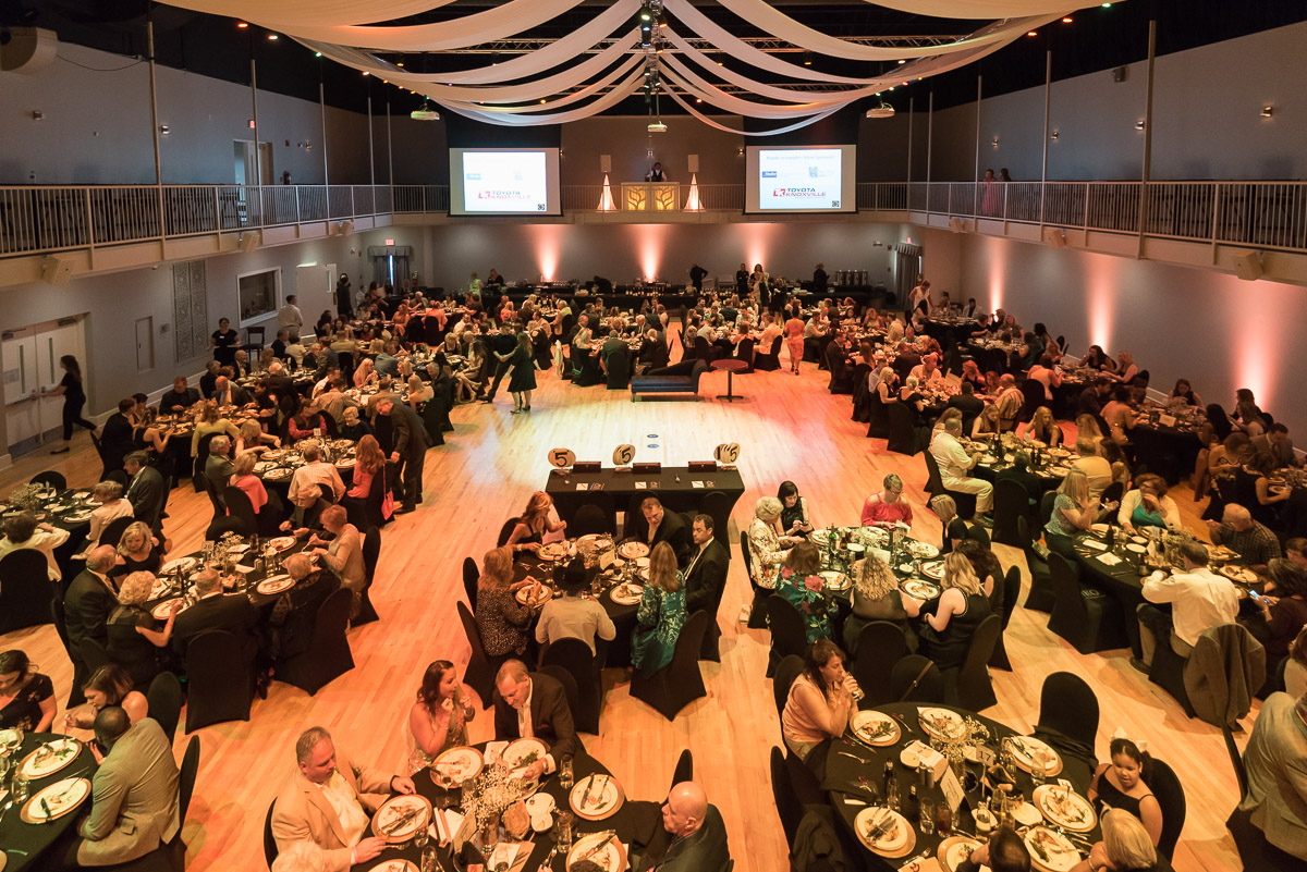 Over $85,000 was raised for Horse Haven of Tennessee at the 2018 Dancing for the Horses!