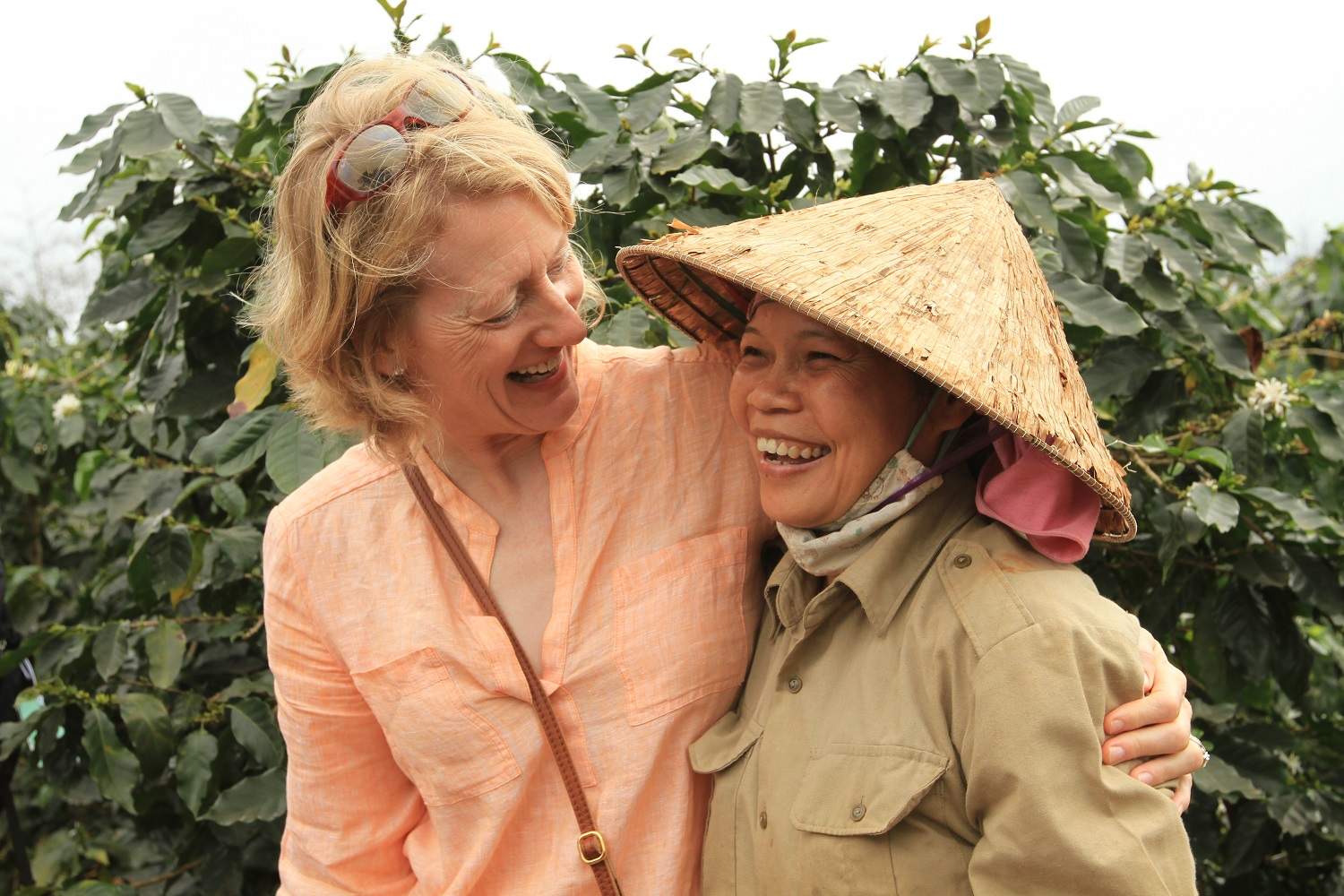 Explore Vietnam and See Our Work