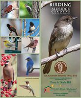 Download our Birding Brochure PDF