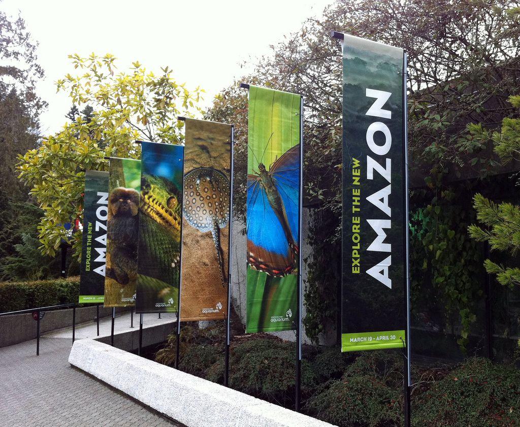 Aquarium Banner