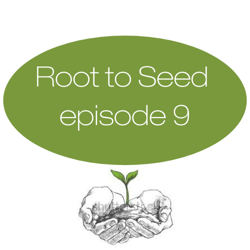 Episode 9: SNAP Benefits (Part 2): SNAP Education