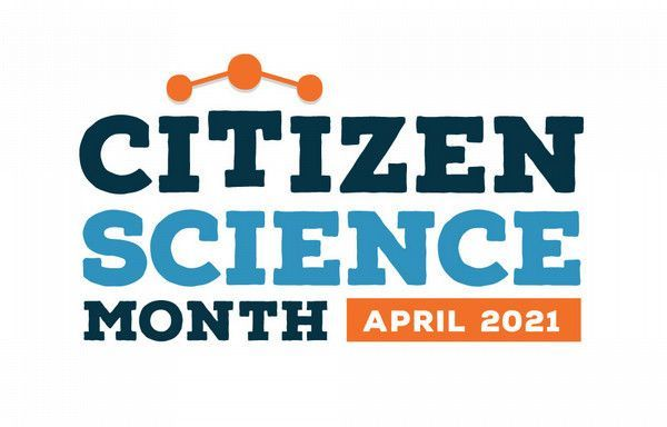 Free Live NSN Webinar Series:  Citizen Science and the Night Sky: SciStarter conversation with David Eicher of Astronomy Magazine