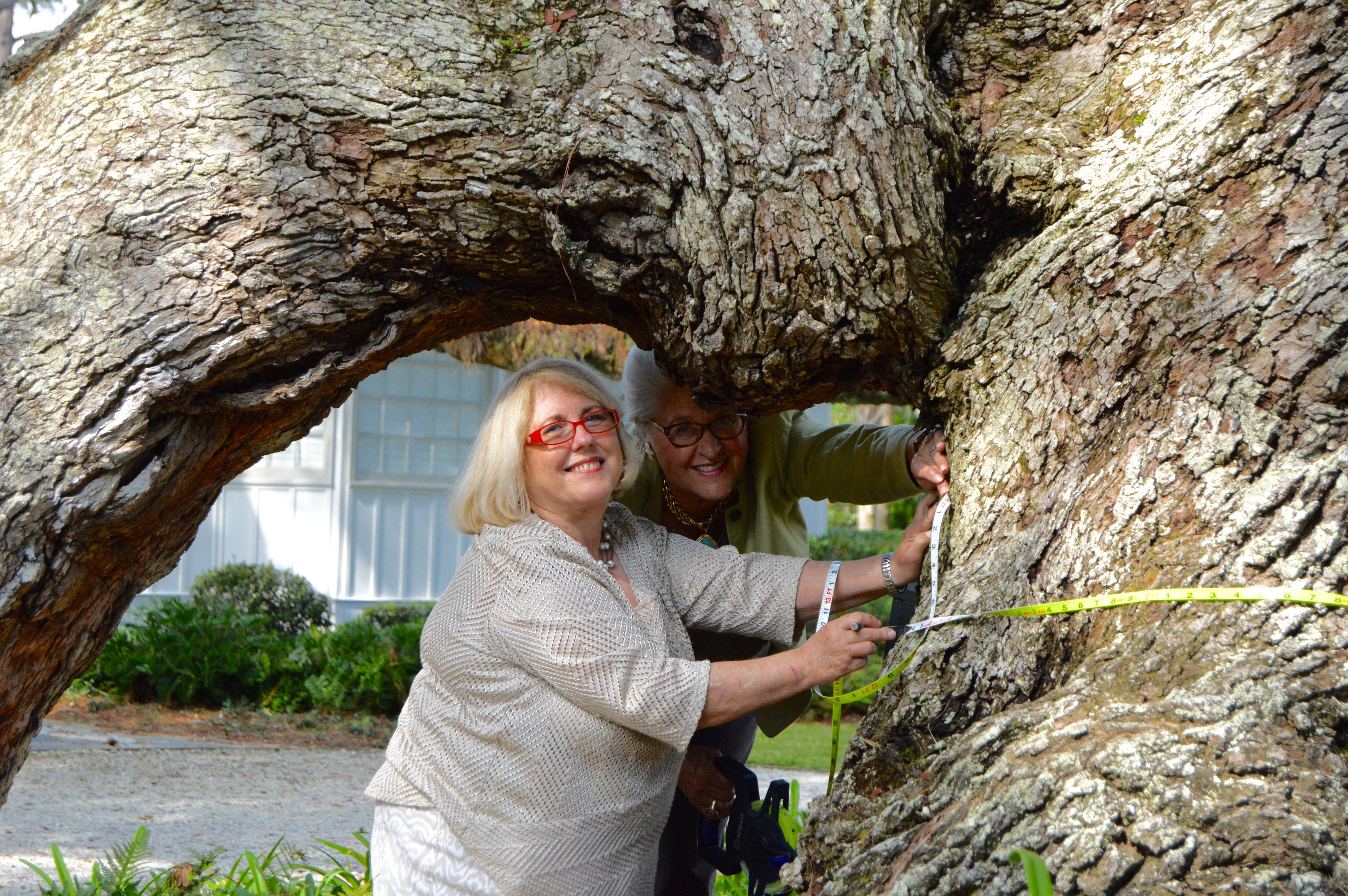 Golden Isles Fund for Trees