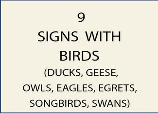 9. M22700 - Signs with Birds (Ducks, Eagles, other)