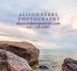 www.alisonperryART.com