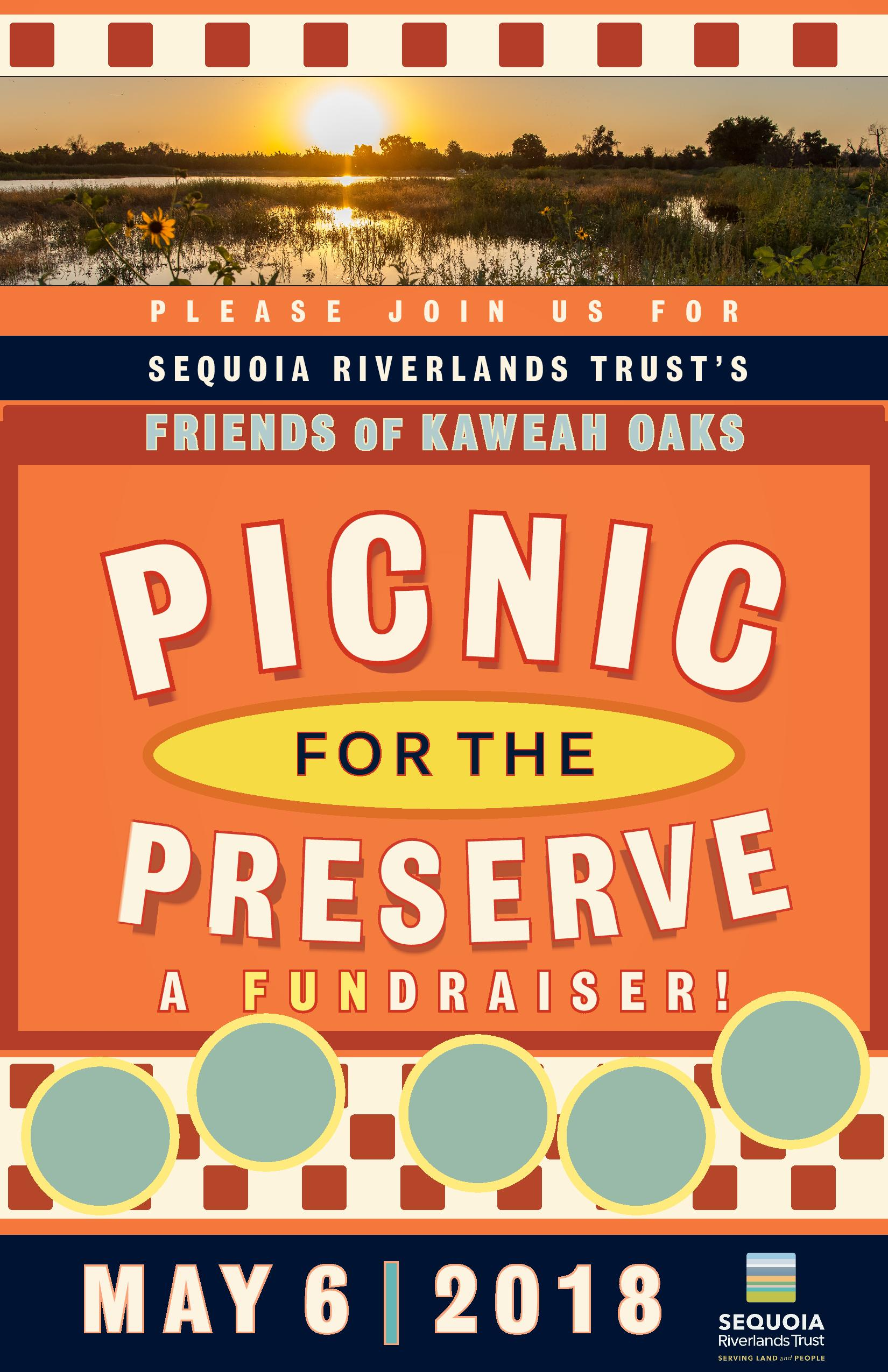 Picnic for the Preserve