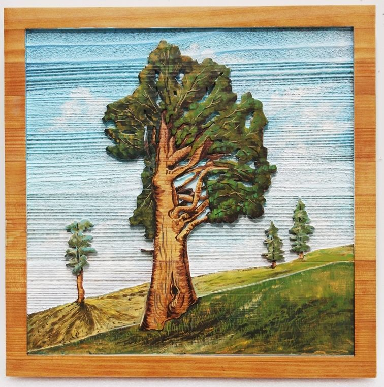 M22050 - Carved and Sandblasted Wood Grain  2.5-D Multi-level Relief HDU  Plaque with  Trees on a Ridge in the Sierra Nevada as Artwork.