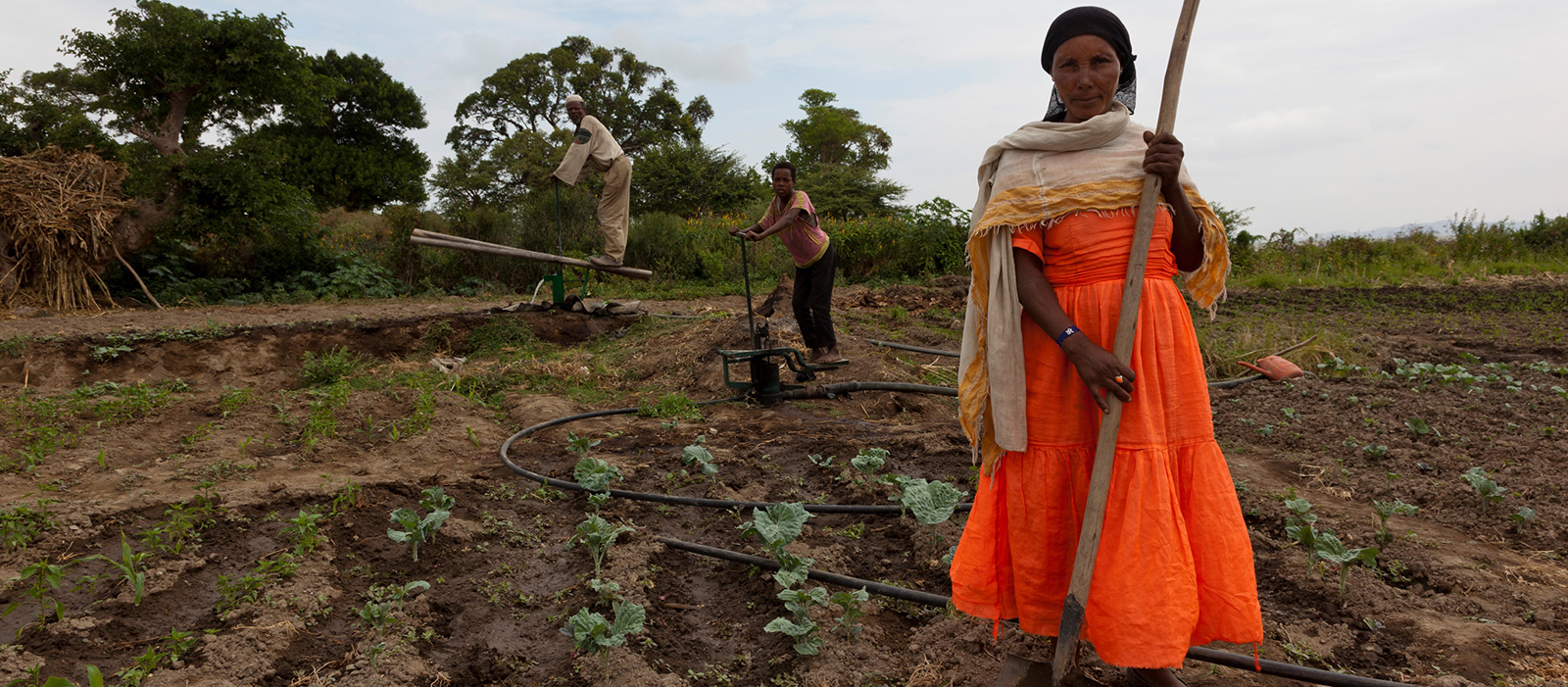 Ethiopia, Ghana and Cambodia | Innovation for rural prosperity