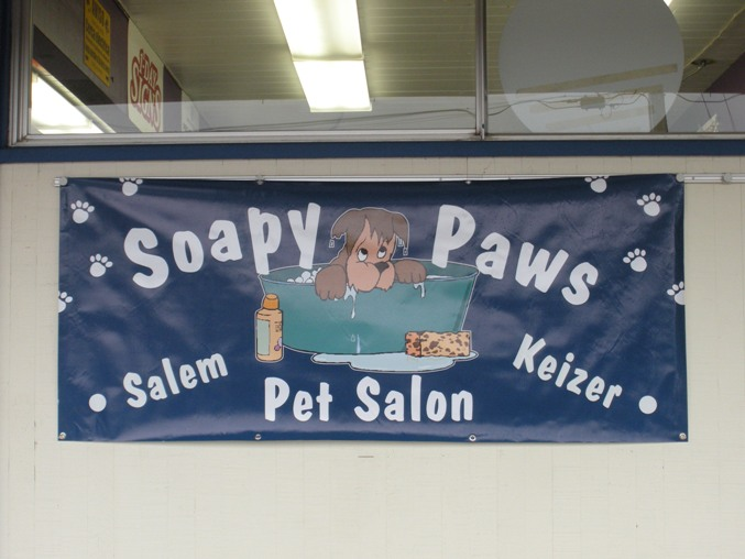 Soapy Paws Banner