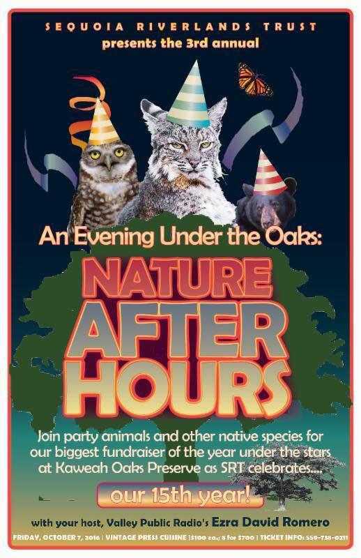 Evening Under the Oaks returns in October