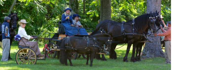 Morven Park Carriage Show, Arena Driving Trial & Pleasure Drive