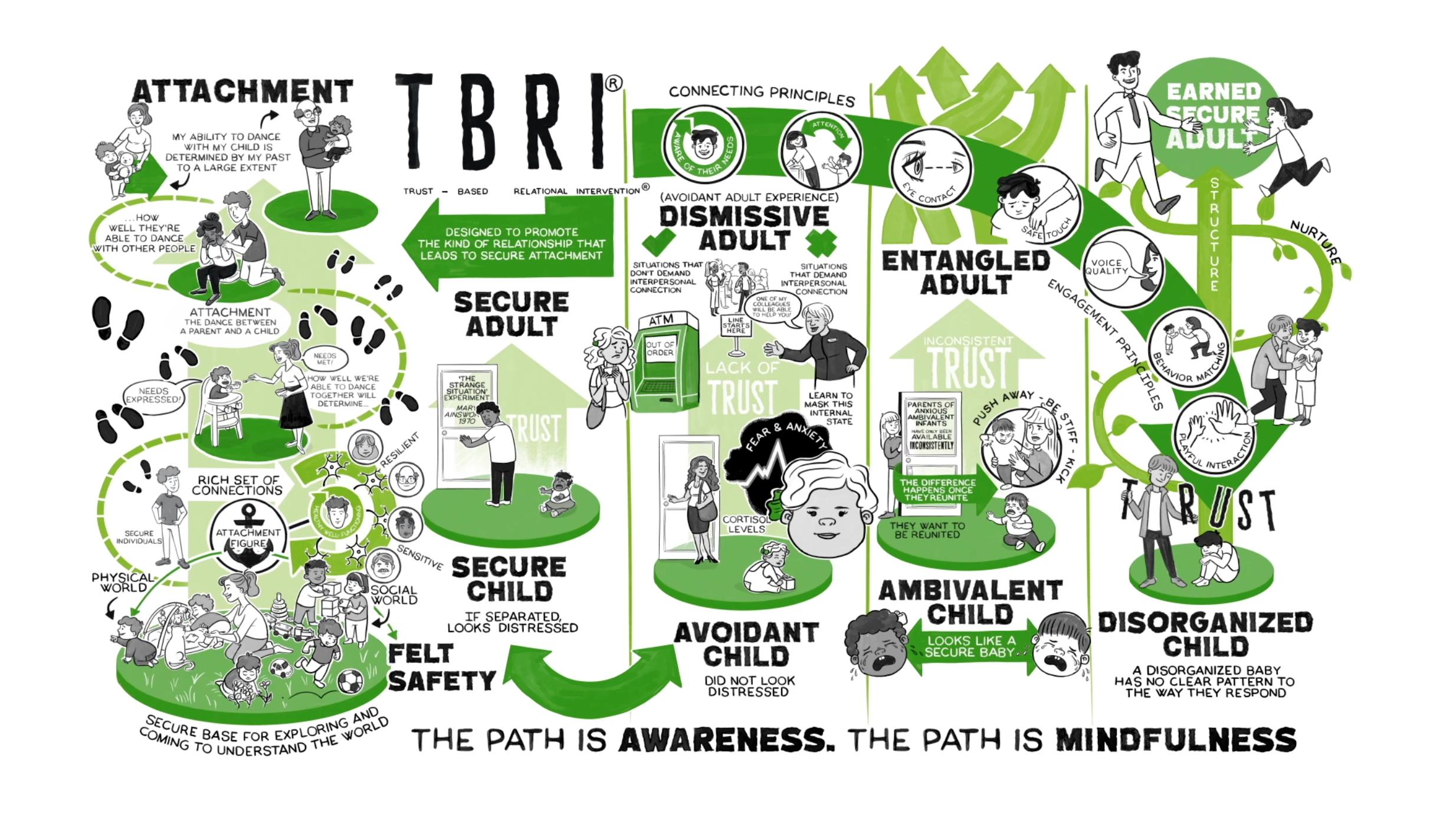 Trauma and TBRI