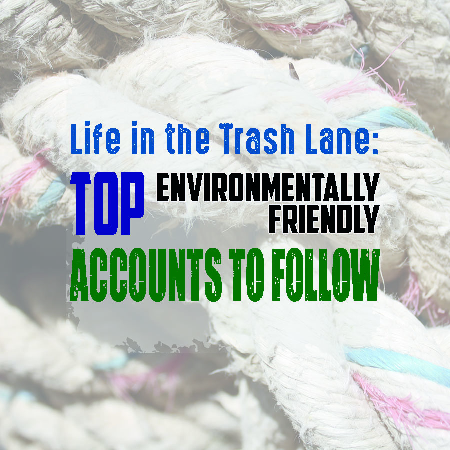 Top Environmentally Friendly Accounts to Follow