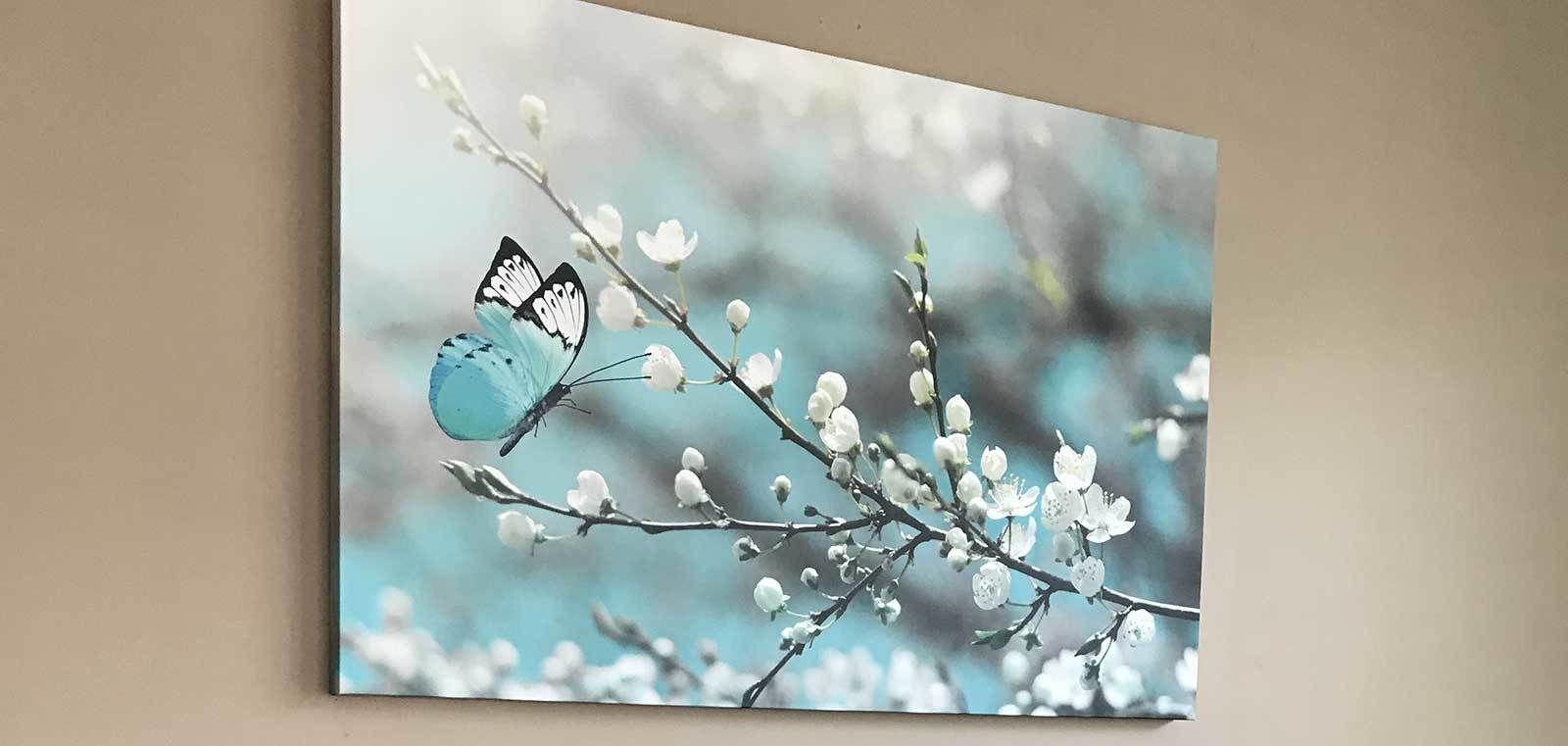 OCP Canvas Photo Frames