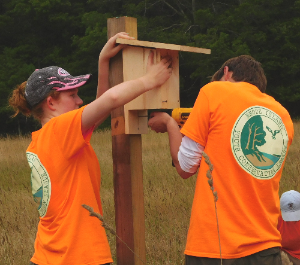 Audubon Society of Rhode Island The Nature Conservancy Rhode Island Youth Conservation League Hand-on Environmental Stewardship Labor Job Positions Available Now Hiring Land Trusts Watersheds Invasive Species Summer Jobs