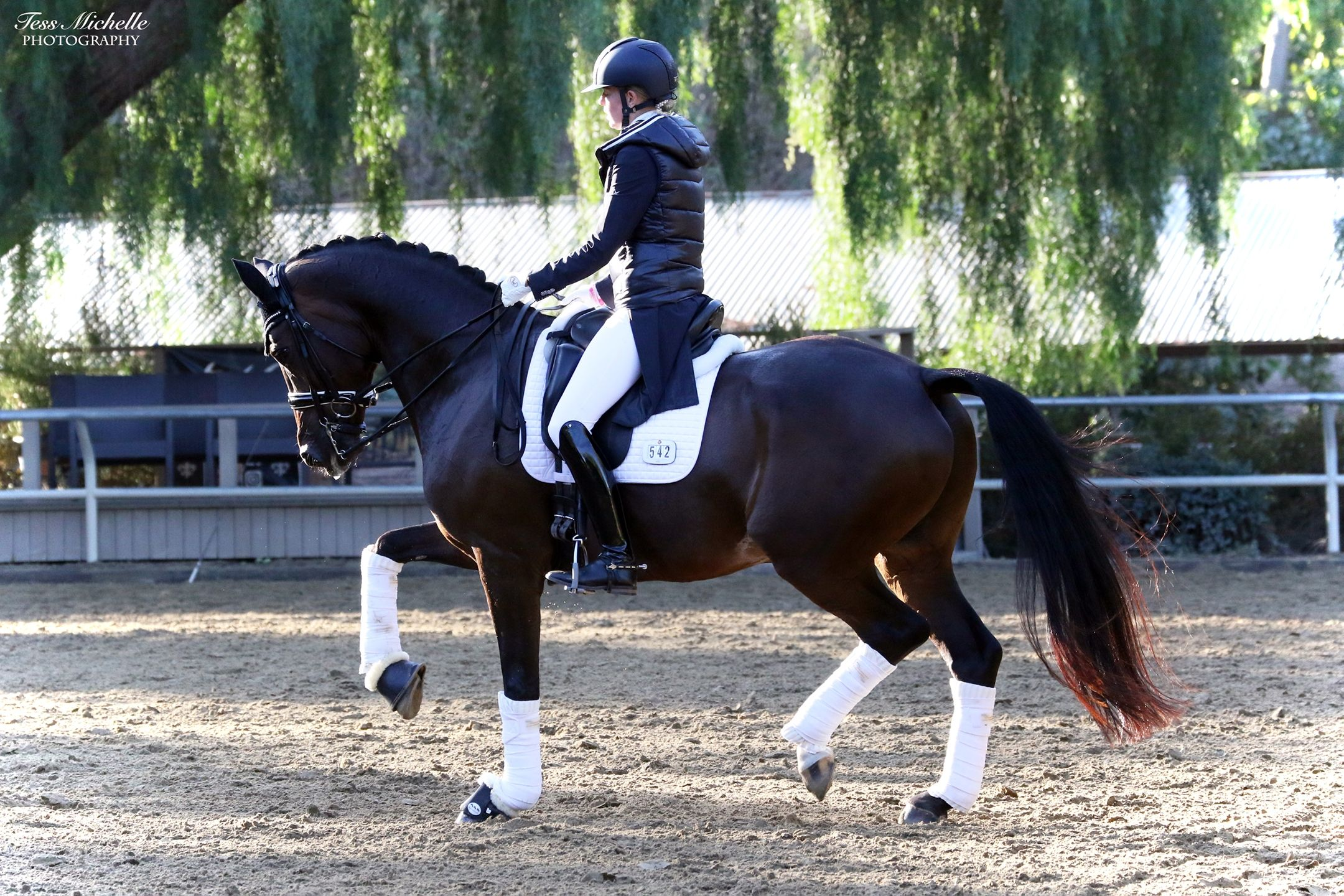 Carly Taylor-Smith and Rosalut NHF Awarded  $25,000 Anne L. Barlow Ramsay Grant From The Dressage Foundation