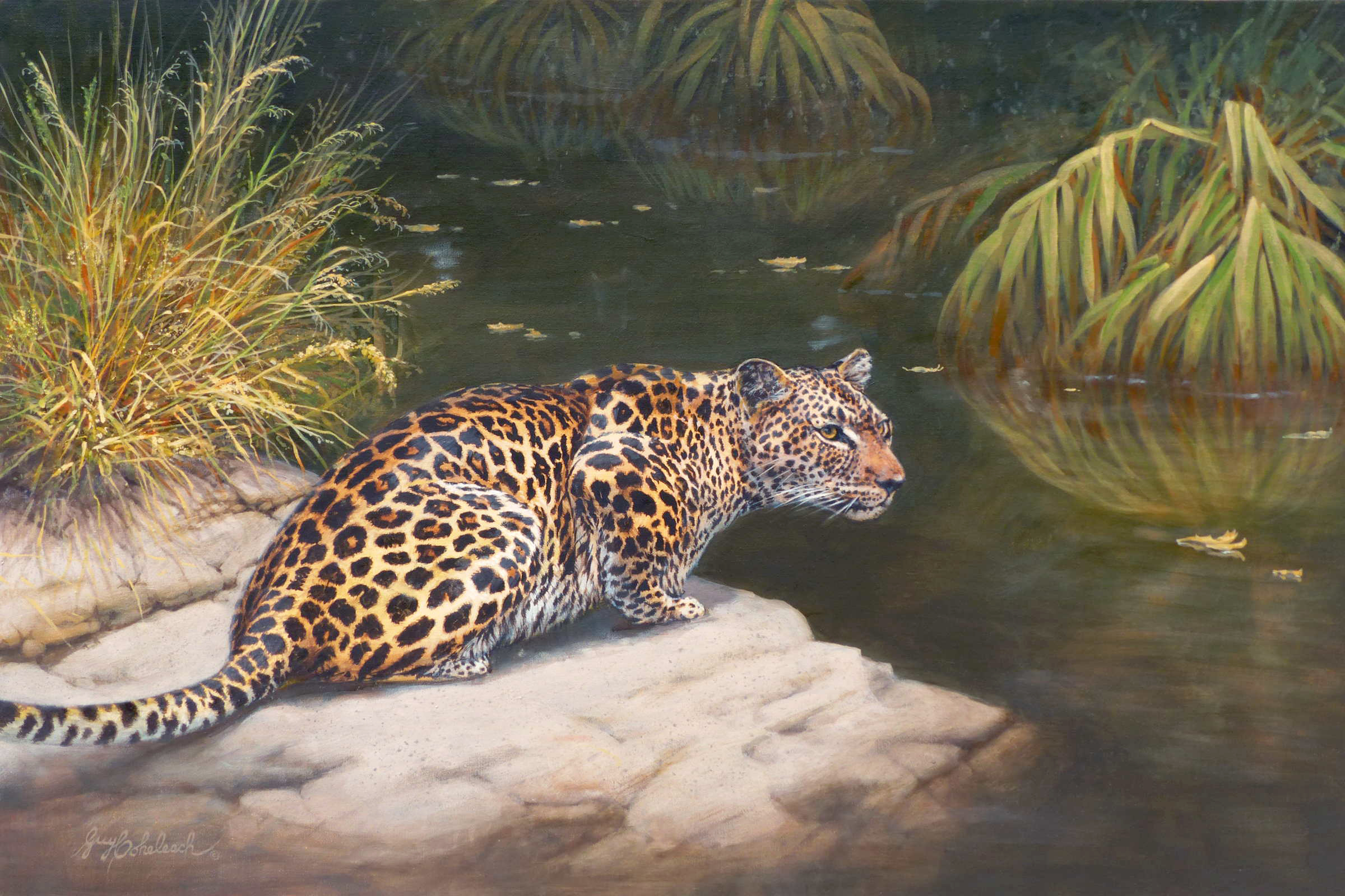 Current Exhibition: Guy Coheleach Wildlife Art