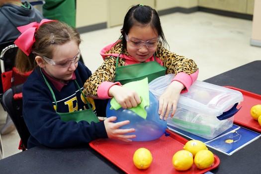 BASF Kids' Lab: Energy Loves Produce